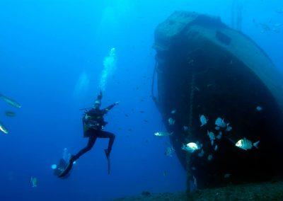 celebrity dive in Tenerife